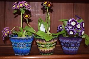 Fairisle Cotton pots